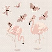 stock photo of pink flamingos  - Cute pink flamingos and butterflies in vector - JPG