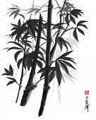 illustration of bamboo in ink, chinese style  painting