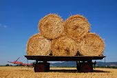 stock photo of hay bale  - Balls of hay on an agriculture trailer - JPG