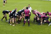 LONDON - MAY 1: Referee R Poite watches the scrum being formed. London Wasps v Cardiff Blues, semi f