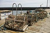 Creel (Lobster Nets)