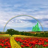 stock photo of yellow castle  - Illustration of the yellow brick road leading to the Emerald city through meadows and hill sides covered in red poppy flowers - JPG