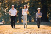 Senior Man And Woman And Young Female Instructor  Workout On Fresh Air. Outdoor Activities, Healthy  poster
