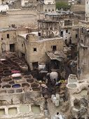 Leather Tannery At Fez, Morocco