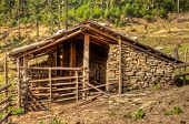 Yak Herder's Home