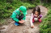 Little Children Boy And Girl Sitting On Forest Ground Exploring And Learning About Nature And Insect poster