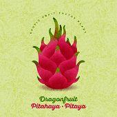 Pitaya Illustration. Red Ripe Dragon Fruit On Shabby Background. Original Illustration On Shabby Sty poster