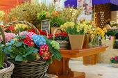 Flower shop concept. Close-up beautiful lovely bouquet of mixed flowers on wooden table. Flowers com poster