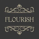 Flourish Swirls Vintage  Vector Flourishes Ornate Curly Decoration. Calligraphic Border Element. Han poster