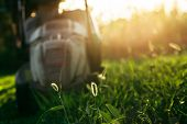 Mowing The Lawn With A Lawn Mower In The Backyard. Work In The Yard In The Early Sunny Morning Or Ev poster