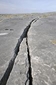 Crack in Limestone Pavement