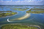 Coastal Wetland Marsh.