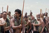 Maori Warriors On Waitangi Day