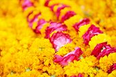 Indian traditional culture colorful garland from fresh orange flowers for holy religious ritual. Sha