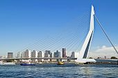 ROTTERDAM, NETHERLANDS - SEPTEMBER 09: View on Erasmus Bridge and Rotterdam port. Erasmus Bridge is