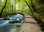 stock photo of ponds  - Boardwalk in the park - JPG