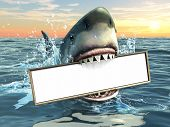 A shark holding a billboard in his mouth. Copy-space available to insert your own text/images. Digit