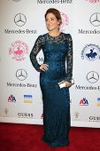 LOS ANGELES - OCT 20:  Sasha Alexander arrives at  the 26th Carousel Of Hope Ball at Beverly Hilton