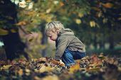 stock photo of pretty-boy  - Little boy and autumn leaves - JPG