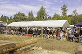 WEST POINT, CA - OCTOBER 6: unidentified audience at Lumberjack day antique axe throwing and log cut