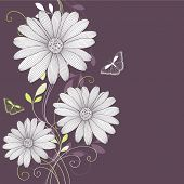 Floral background with flower daisy and butterflies. Element for design. Vector illustration.