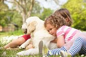 Two Children Petting Family Dog In Summer Field