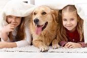 Cute little girls having fun with golden retriever, lying prone on floor at home under blanket, smil