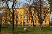 The Orthodox Seminary
