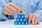 stock photo of supervision  - Human resources and corporate hierarchy concept  - JPG