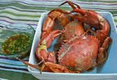 stock photo of cooked blue crab  - Photo of steamed crabs that were caught in the Trat Thailand - JPG