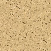 Cracked Soil. Seamless Texture.