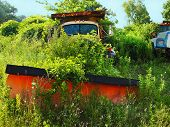 Abandoned Truck And Plow In Weeds