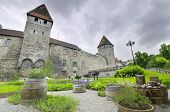 picture of olaf  - Scenic view of the old medieval city of Tallinn Estonia in a cloudy day - JPG