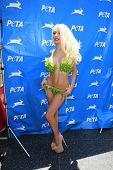 LOS ANGELES - JUL 31:  Courtney Stodden at the PETA Pink's Veggie Hot Dog Event at the Hollywood & Highland on July 31, 2013 in Los Angeles, CA