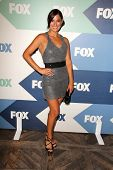 LOS ANGELES - AUG 1:  Angelique Cabral arrives at the Fox All-Star Summer 2013 TCA Party at the SoHo