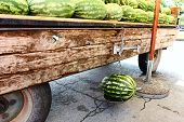 Watermelon On Sale