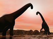 Brachiosaurus dinosaurs by sunset - 3D render