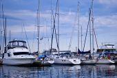 Luxury Yachts Moored In Harbor