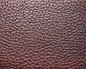 stock photo of crocodilian  - Background of Dark Brown and Black leather texture - JPG