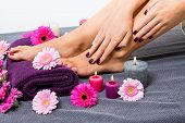 stock photo of toe nail  - Overhead view of the bare feet of a woman with beautiful manicured red nails resting on a purple towel surrounded by fresh colourful pink gerbera daisies in a spa or beauty salon - JPG