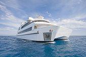 Large Luxury Catamaran At Sea