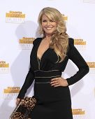 LOS ANGELES - JAN 14:  Christie Brinkley at the 50th Sports Illustrated Swimsuit Issue at Dolby Thea