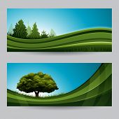Spring background nature banners headers with tree