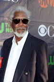 LOS ANGELES - JUL 17:  Morgan Freeman at the CBS TCA July 2014 Party at the Pacific Design Center on