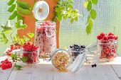 White Black Red Currants Gooseberries Cherries Jars Preparations