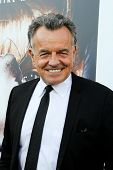 LOS ANGELES - JUL 16:  Ray Wise at the 'Twin Peaks - The Entire Mystery' Blu-Ray/DVD Release Party A