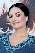 LOS ANGELES - JUL 16:  Madchen Amick at the 'Twin Peaks - The Entire Mystery' Blu-Ray/DVD Release Pa