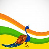 Indian national bird peacock on national tricolors wave background for Indian Independence Day celeb
