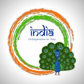 Indian national bird peacock in dancing position on national flag colors circle on grey background f