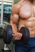 Close-up mid section of shirtless young muscular man exercising with dumbbell in gym